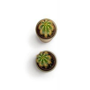item cover small cactus 3