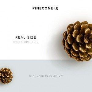 item description pinecone 1