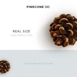 item description pinecone 2