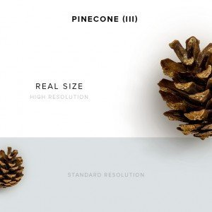 item description pinecone 3