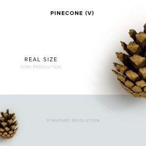 item description pinecone 5