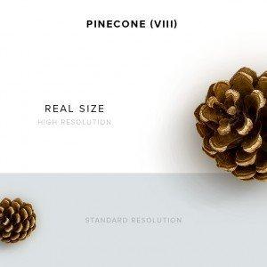 item description pinecone 8