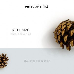 item description pinecone 9