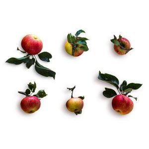item cover red apples with stem pack