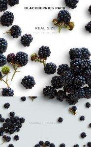 item description blackberries pack