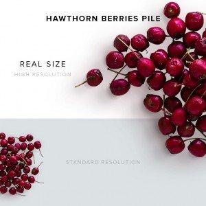 item description hawthorn berries pile