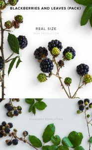 item description leather blackberries and leaves pack