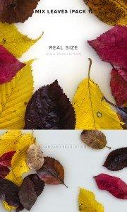 item description mix leaves pack 1