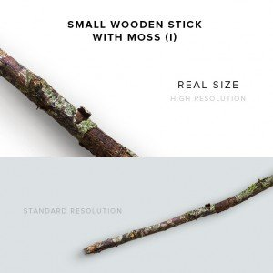 item description small wooden stick with moss 1