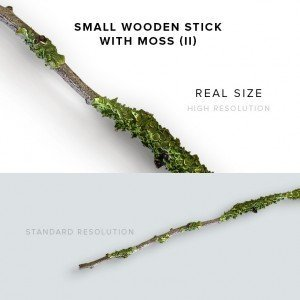 item description small wooden stick with moss 2
