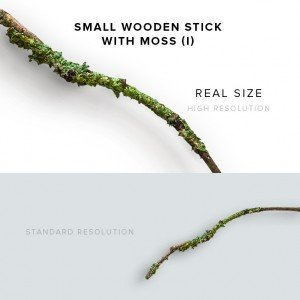 item description small wooden stick with moss 3