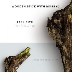 item description wooden stick with moss 1
