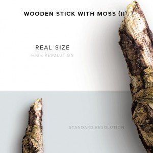 item description wooden stick with moss 2