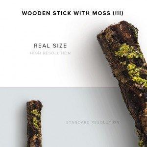 item description wooden stick with moss 3