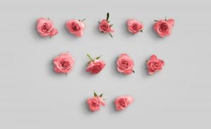 flower edition vol1 custom scene list item roses 2
