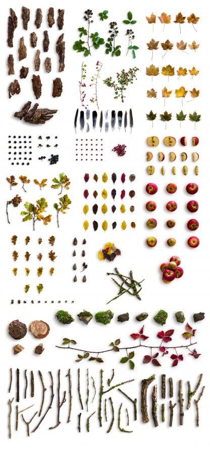 autumn edition website items list 1