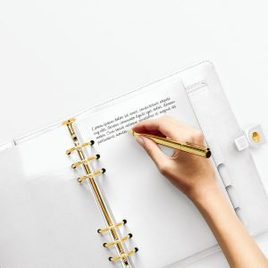 planner edition hand pos 2 preview