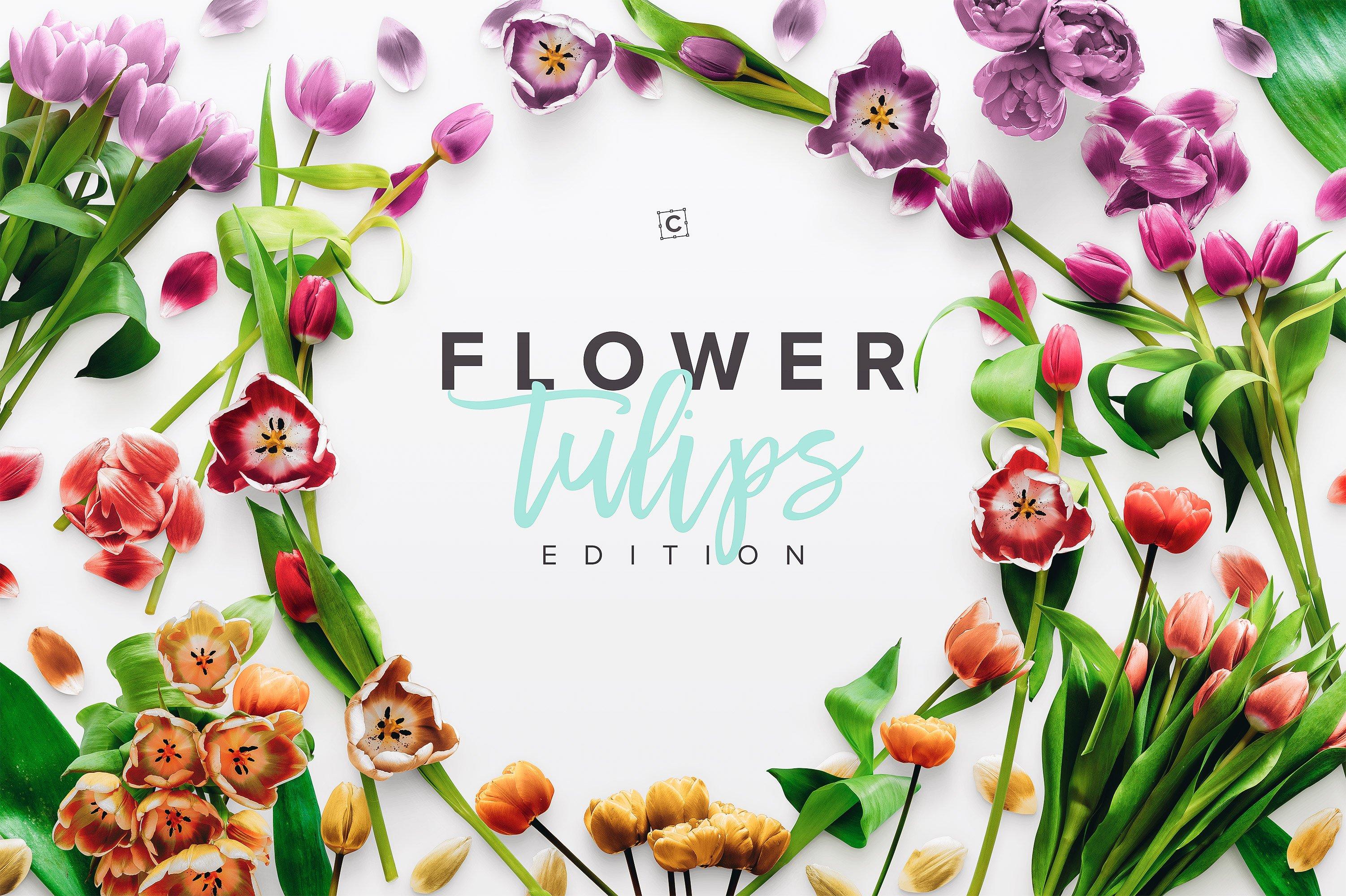 custom scene flower tulips edition cover