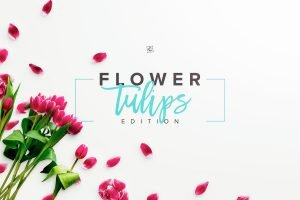 landscape mockup flower tulips scene 002 r