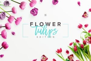 landscape mockup flower tulips scene 004 r