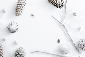winter complete collection teaser 1 bg