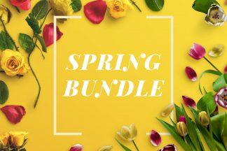spring bundle customscene 2x3