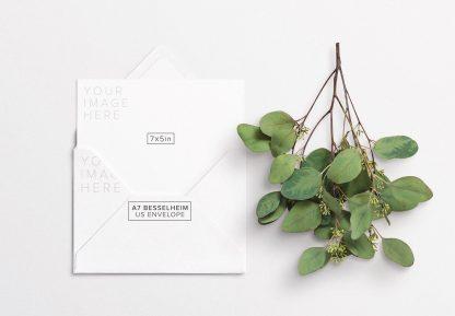 5x7in card w envelope and eucalyptus thumbnail