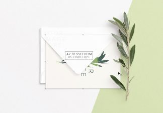 5x7in card w envelope and olive tree branch thumbnail