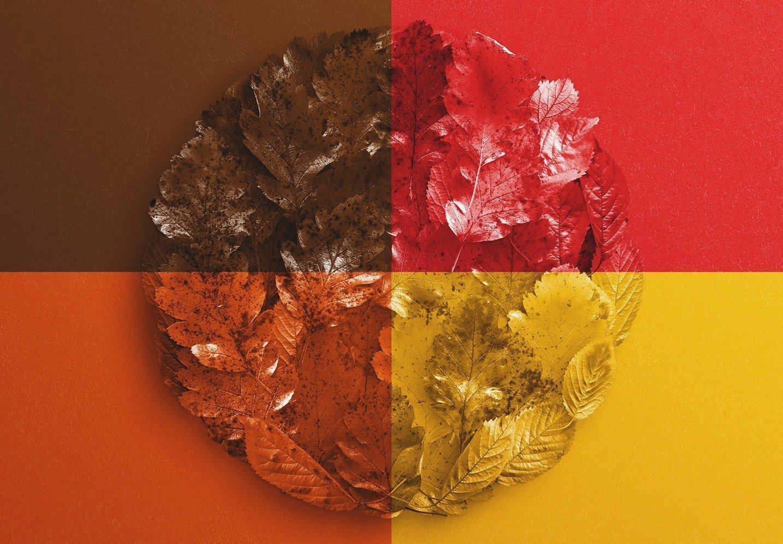 autumn background mockup image02
