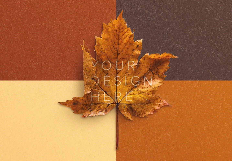 autumn leaf mockup image02