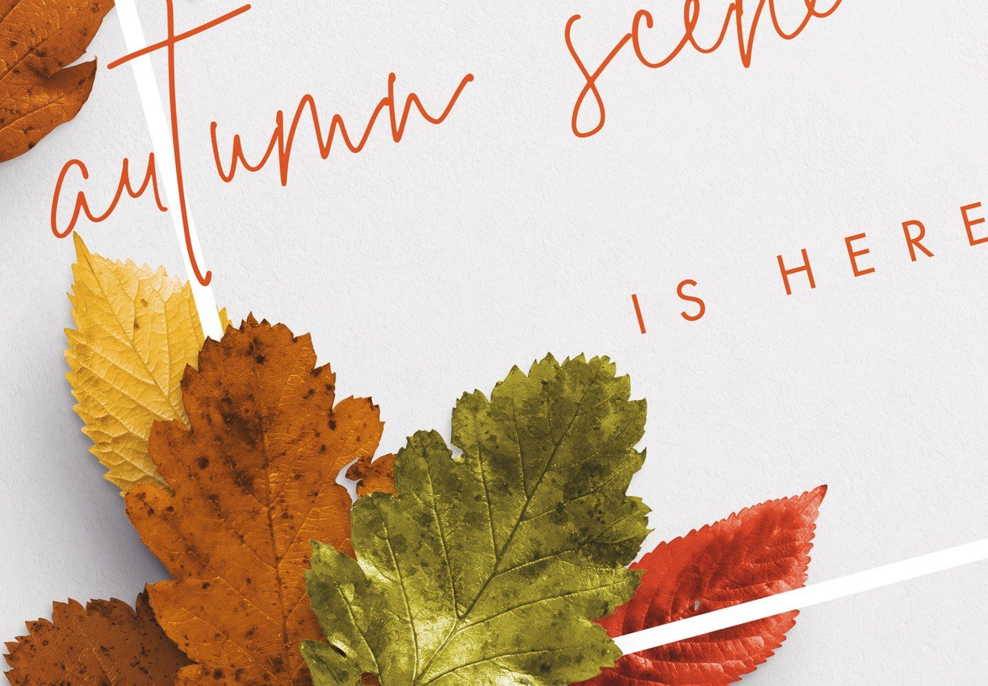 autumn leaves frame mockup image04