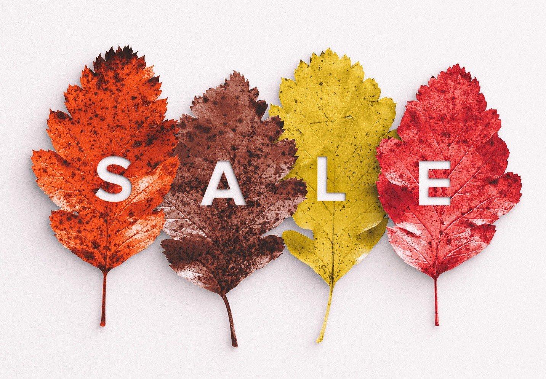 autumn leaves mockup image03