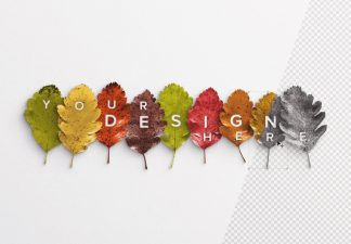 autumn leaves mockup thumbnail