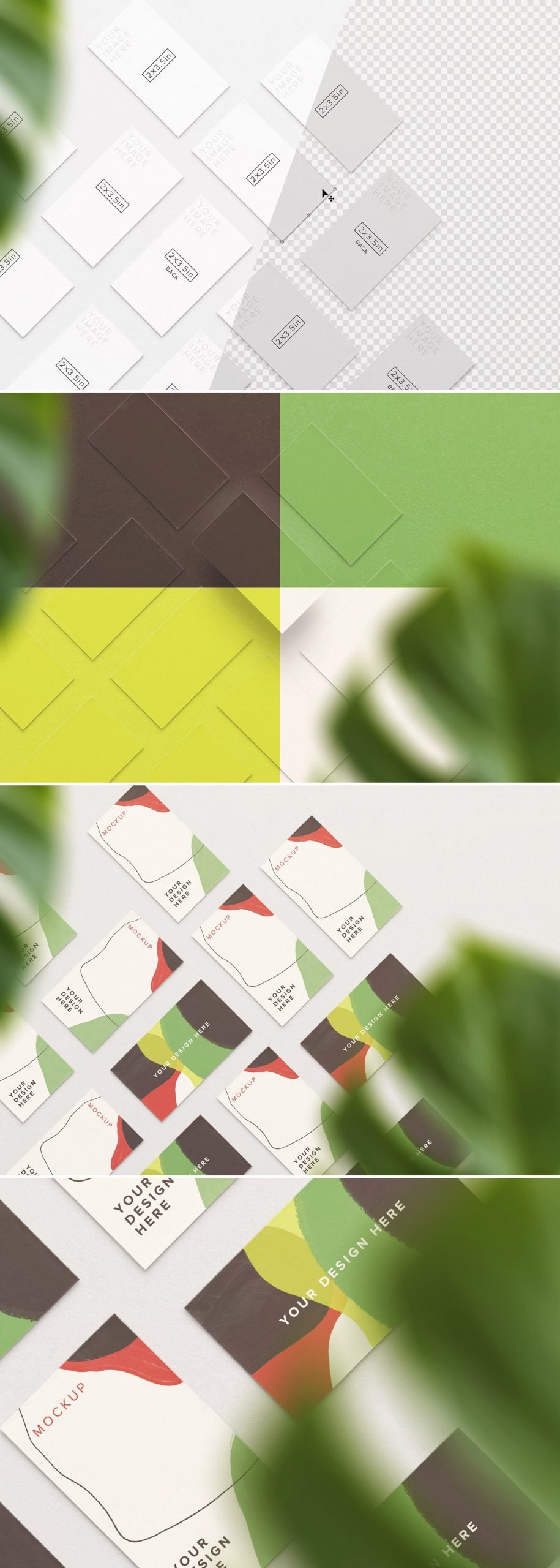 business cards mockup layout w plant preview1 1 scaled