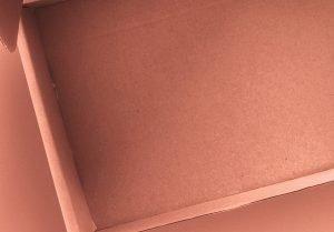 cardboard postal opened box mockup image04