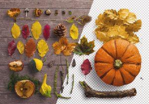 fall scene creator image01