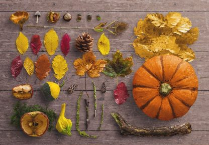 fall scene creator thumbnail