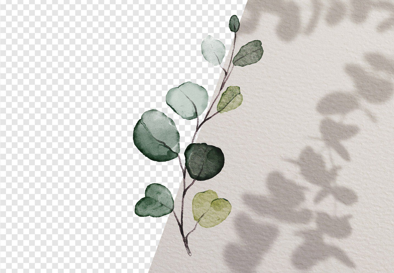 fresco gesso paper background mockup image01