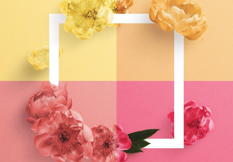 peonies flower w frame mockup image02
