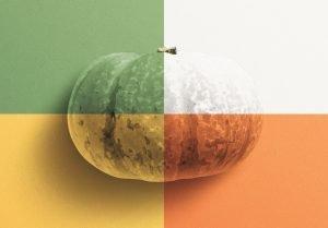 pumpkin mockup image02 1