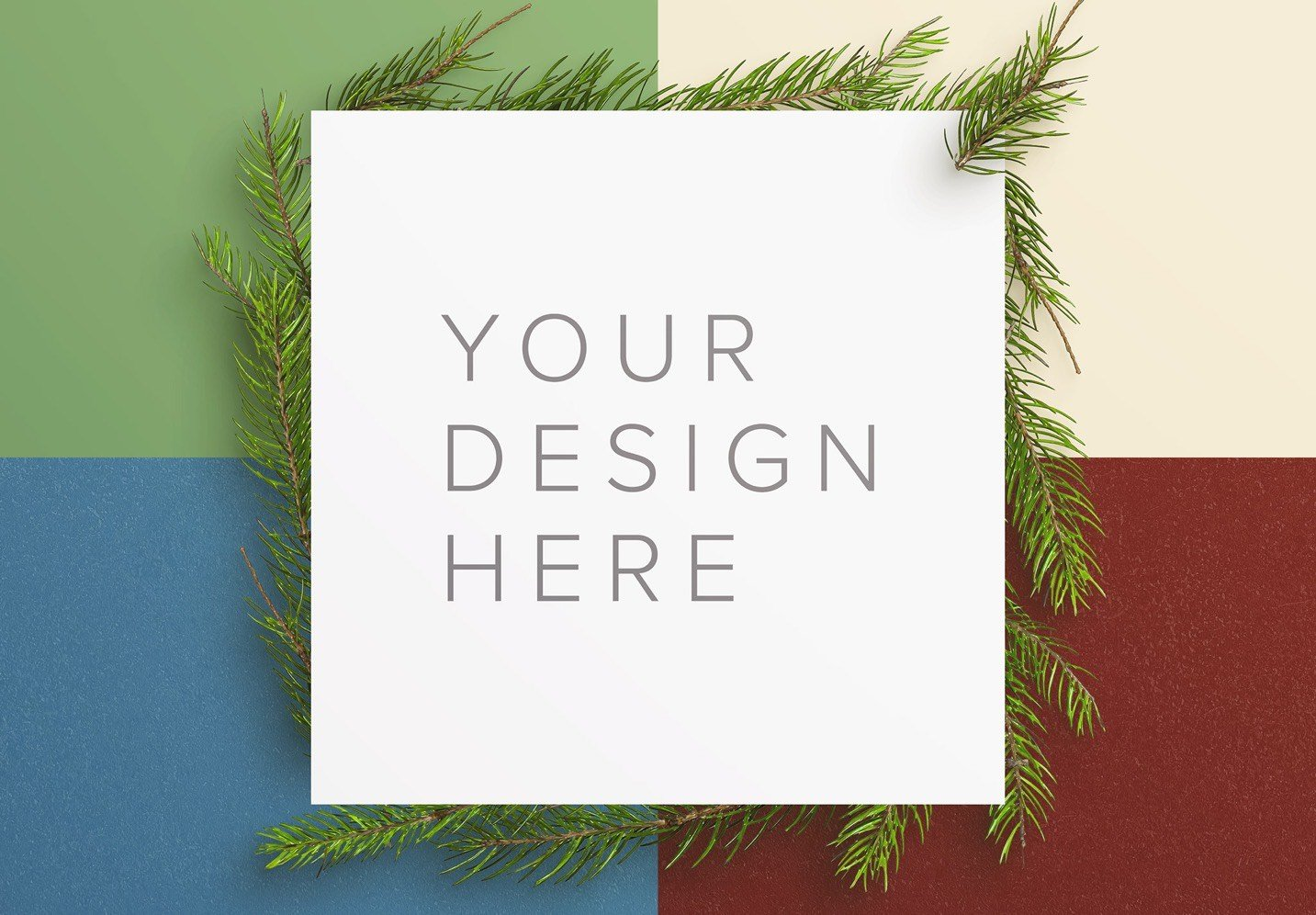 winter frame fir tree mockup image02