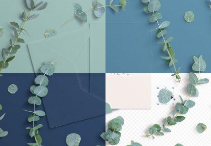 5x7in card envelope mockup w eucalyptus image02