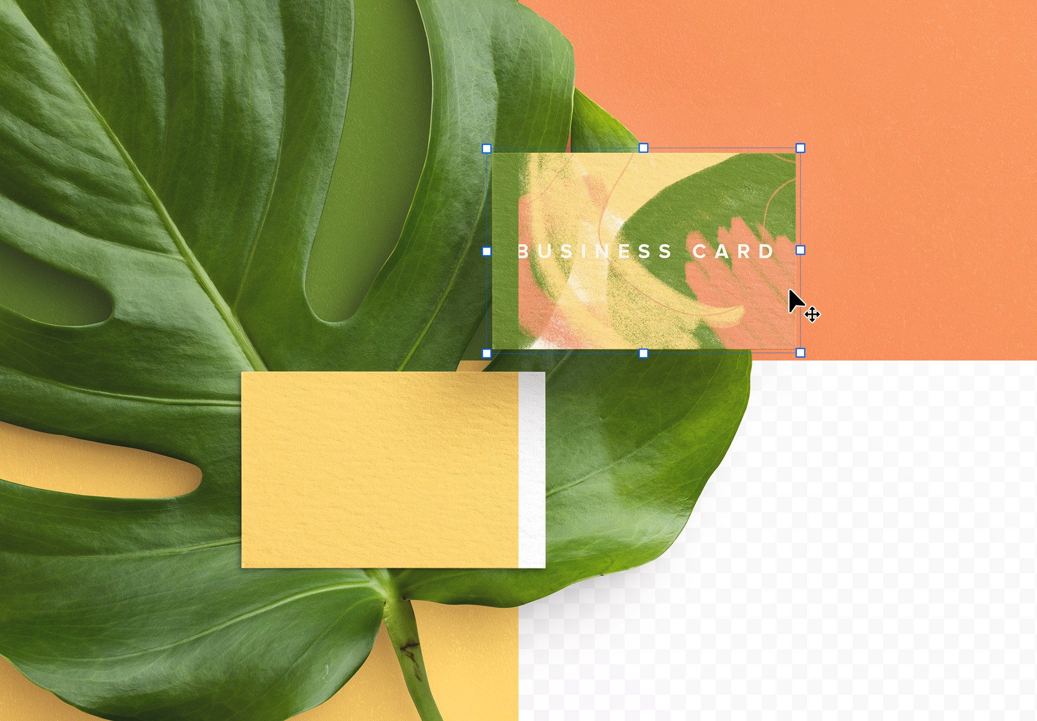 business card monstera plant image02