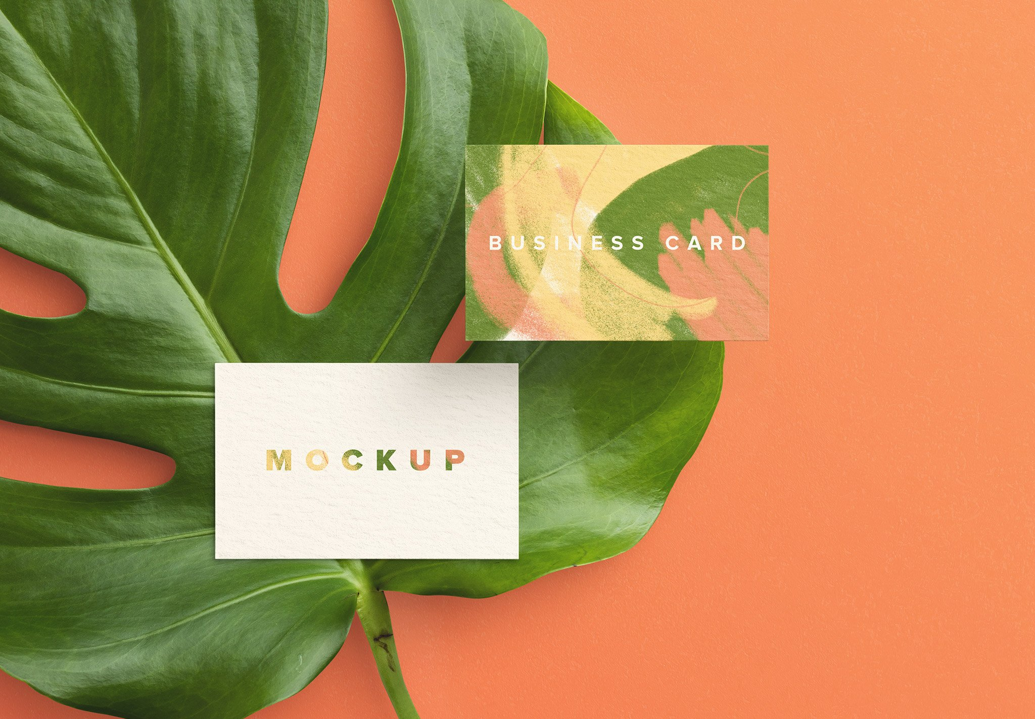 business card monstera plant image03