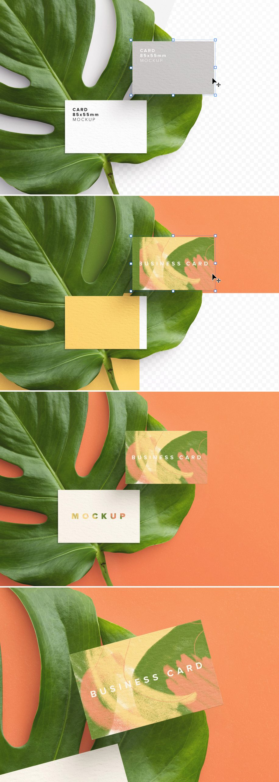 business card monstera plant preview scaled