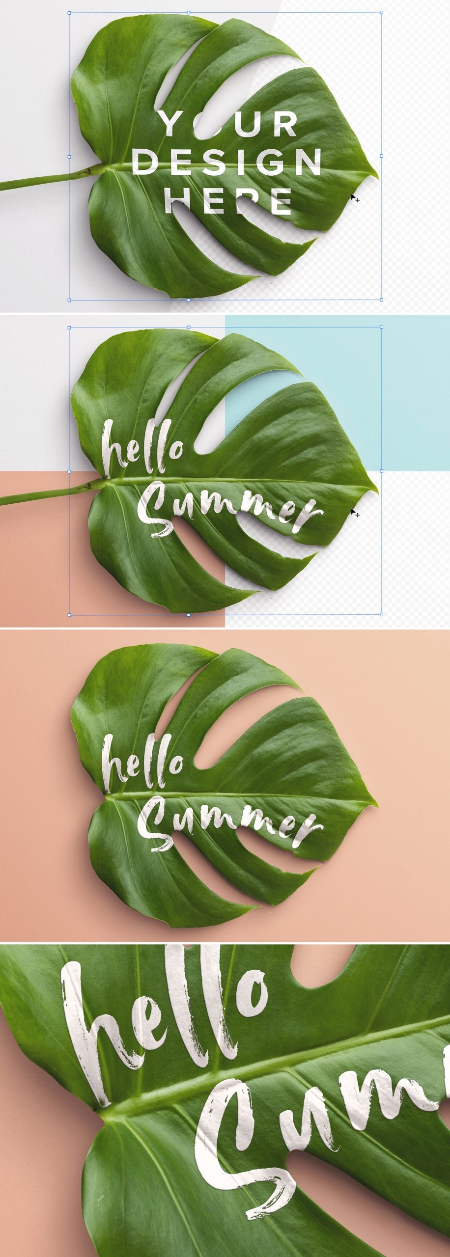 Monstera Leaf Plant Mockup Preview scaled