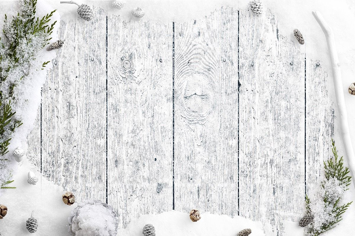 Cold Winter Nature Scene with Snow Fir Branches Pinecones and Acorns