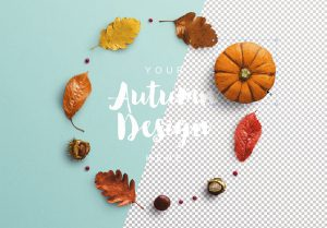 Autumn Frame Pumpkin and Leaves Mockup image01