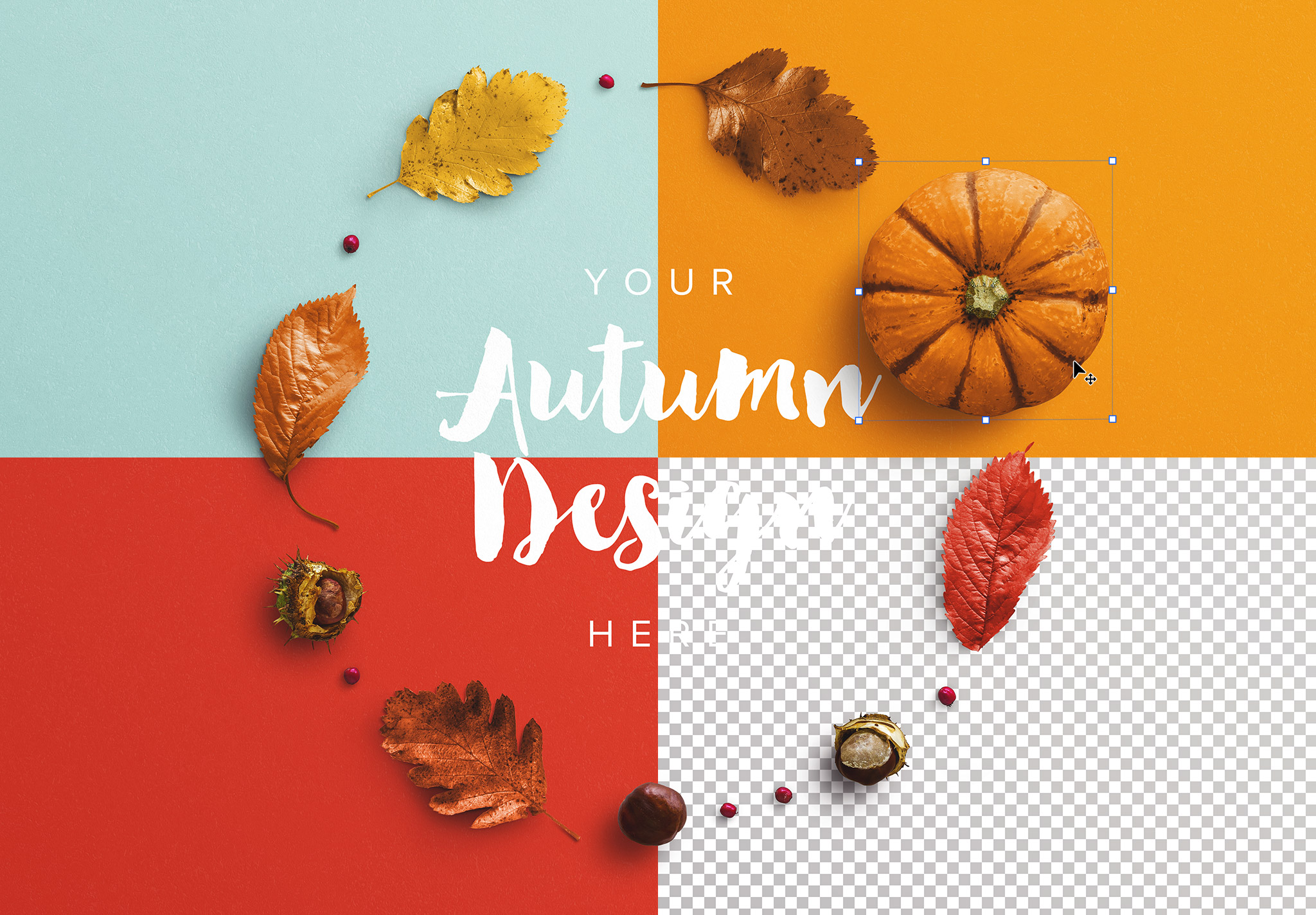 Autumn Frame Pumpkin and Leaves Mockup image02