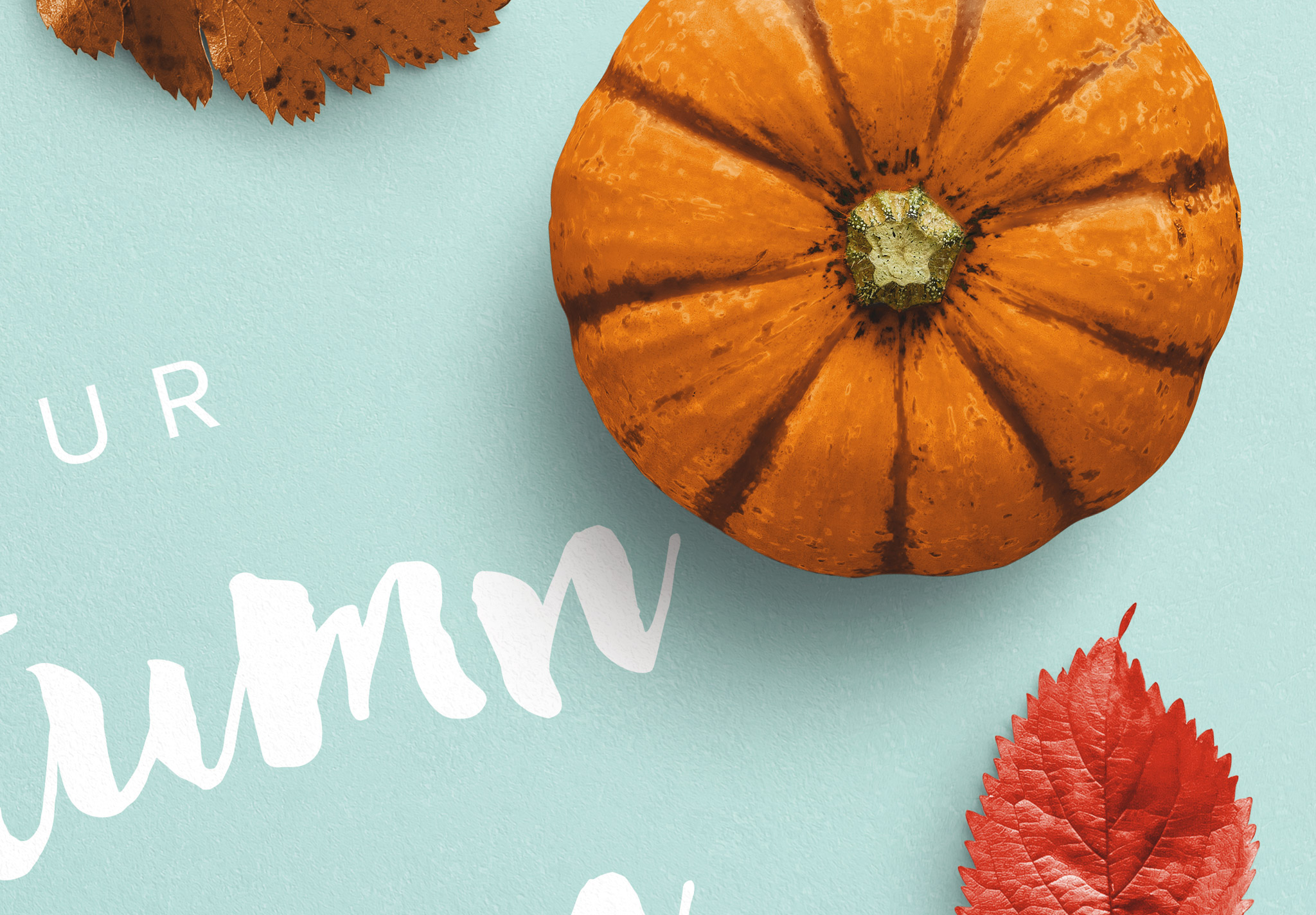 Autumn Frame Pumpkin and Leaves Mockup image04